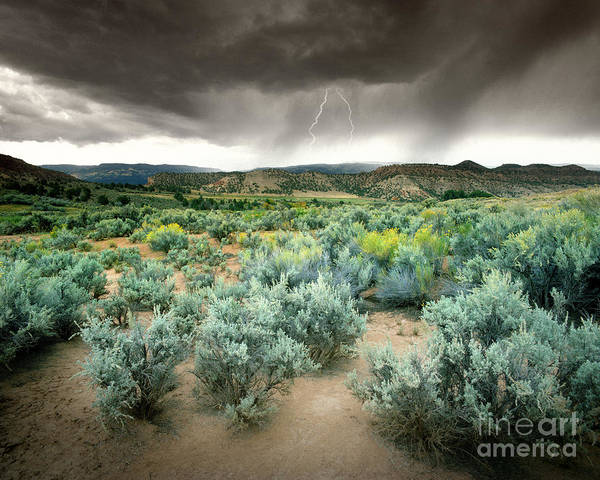 Photograph - Storms Never Last by Edmund Nagele