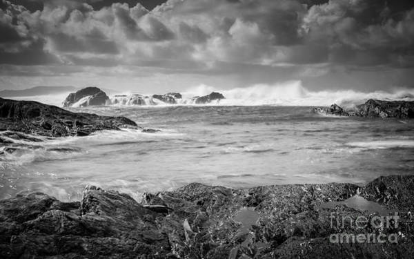 Photograph - Stormy by Carrie Cole