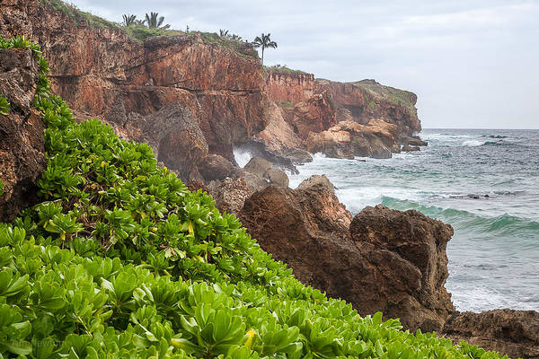 Photograph - Stormy Cliffs 3 by Tim Newton