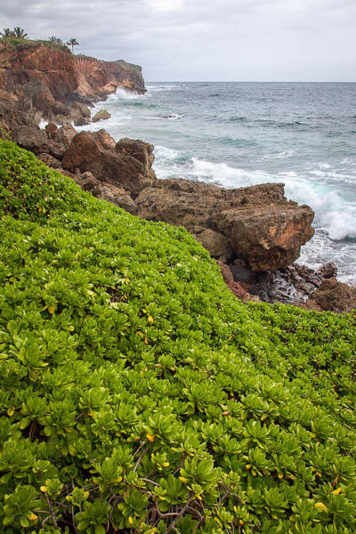 Photograph - Stormy Cliffs 1 by Tim Newton