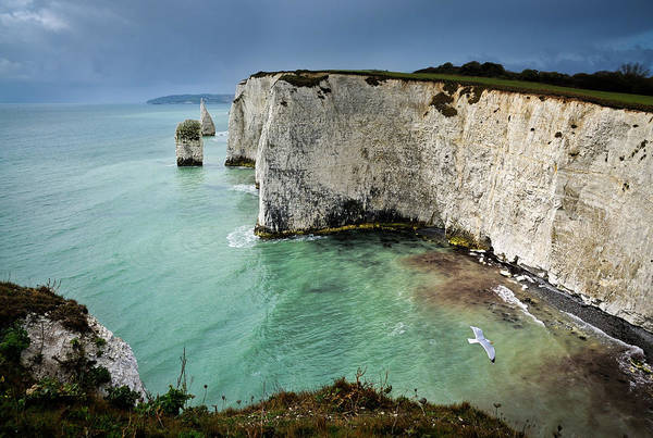 Studland Photograph - Stormy Days by Allan Bickers