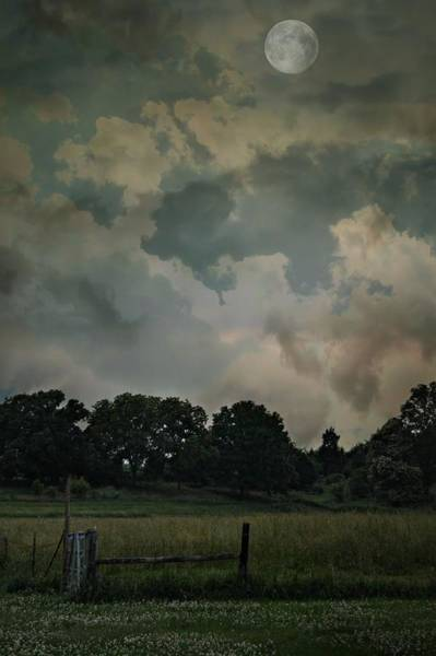 Photograph - Stormy Nights by Rebecca Frank