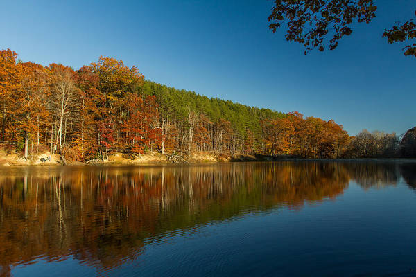 Photograph - Strahl Lake - Brown County State Park by Ron Pate