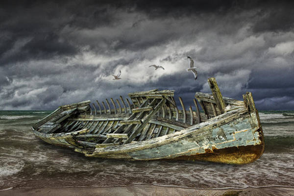 Photograph - Stranded Wooden Shipwreck by Randall Nyhof