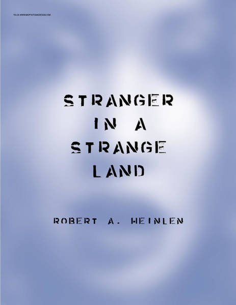 Photograph - Stranger In A Strange Land by Keith May