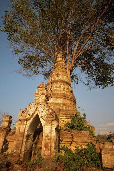 Jim Temple Photograph - Strangler Fig Overtaking Buddhist Stupa by Jim Simmen