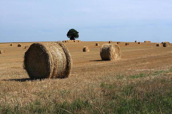 Photograph - Rural French Landscape by Aidan Moran