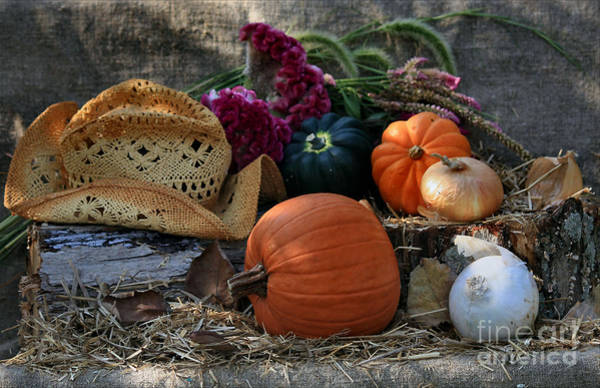 Acorn Squash Photograph - Straw Hat And Fall Vegetables by Luv Photography