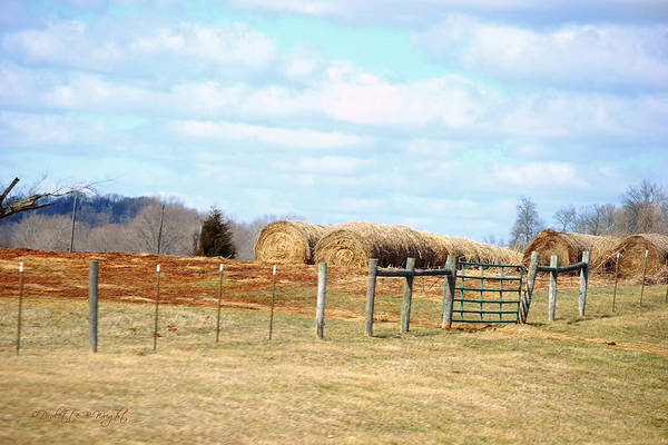 Photograph - Straw Rolls by Paulette B Wright
