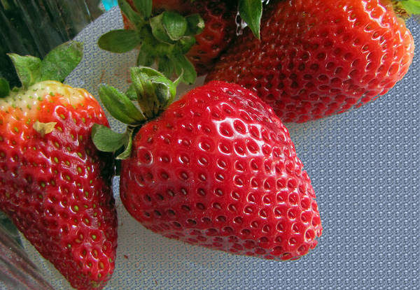 Photograph - Strawberries by Tikvah's Hope