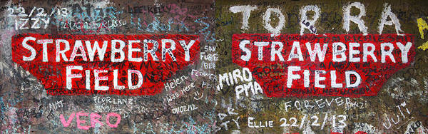 Strawberry Fields Wall Art - Photograph - Strawberry Fields Forever by Semmick Photo