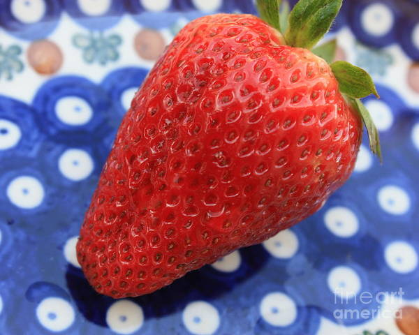 Photograph - Strawberry On Blue Plate by Carol Groenen