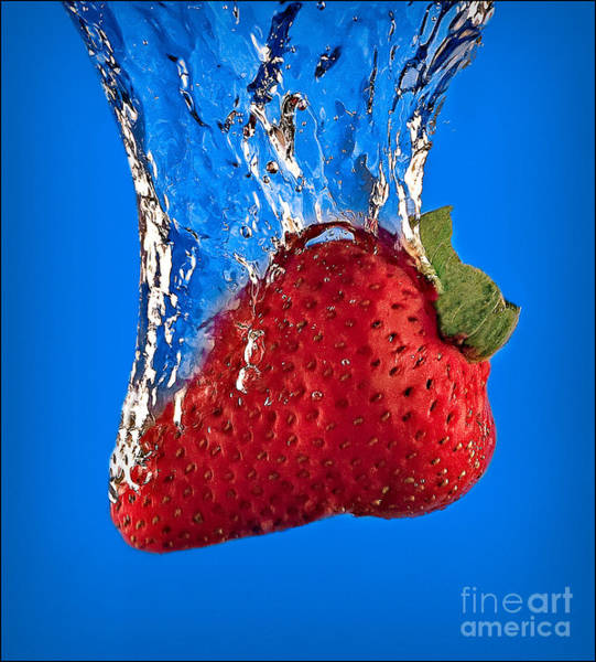 Photograph - Strawberry Slam Dunk by Susan Candelario