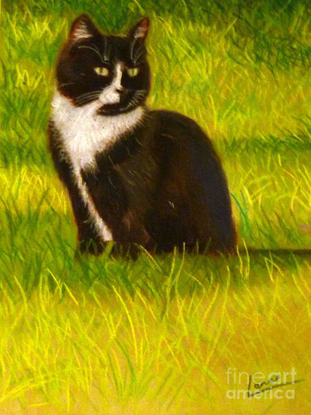 Pastel - Strayed Into My Life by Lance Sheridan-Peel