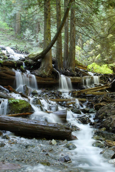 Photograph - Stream Below Bridal Veil Falls In Bridal Veil Falls Provincial P by Rob Huntley