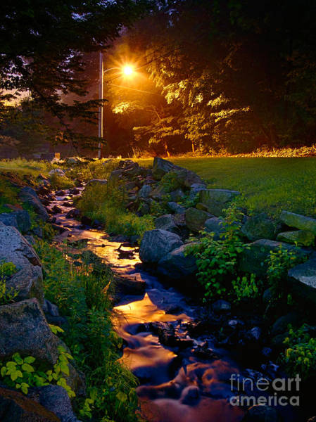 Photograph - Stream By Streetlight by Mark Miller