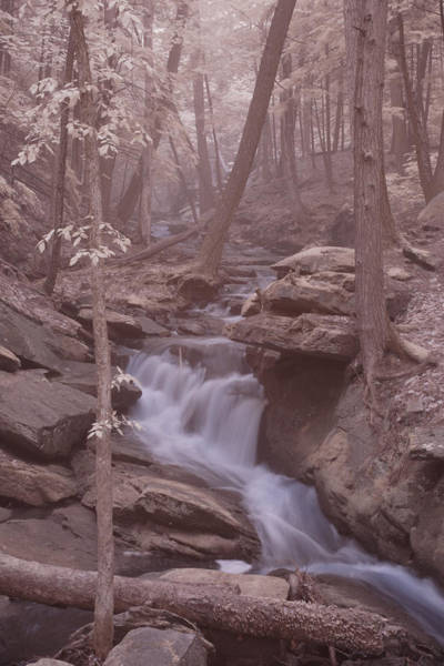 Photograph - Stream Cutting Through by Jeff Folger