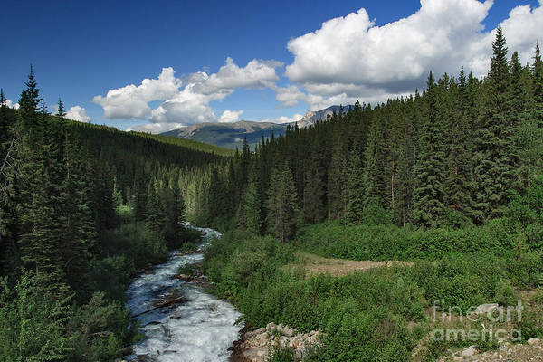 Photograph - Stream Flow by Charles Kozierok