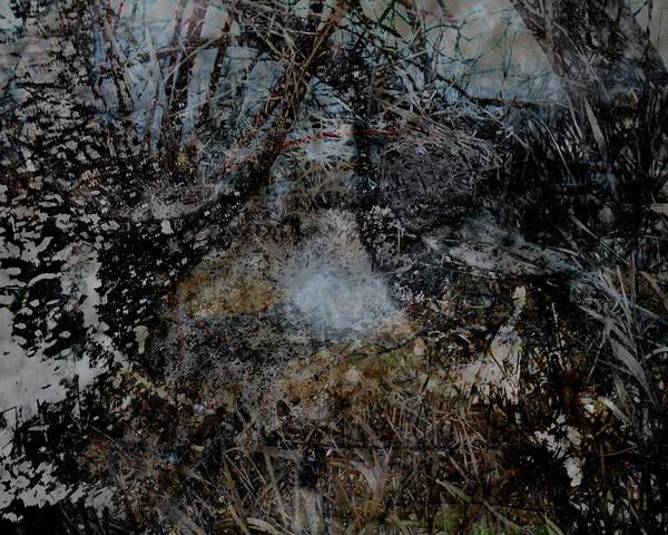 Wall Art - Digital Art - Stream by James Barnes