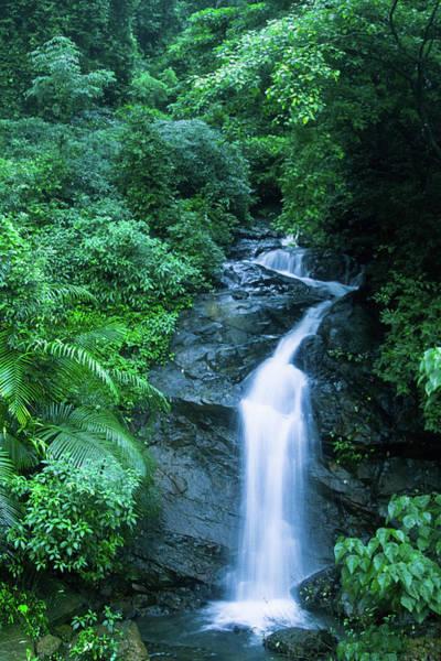 Goa Photograph - Stream by Kranthi