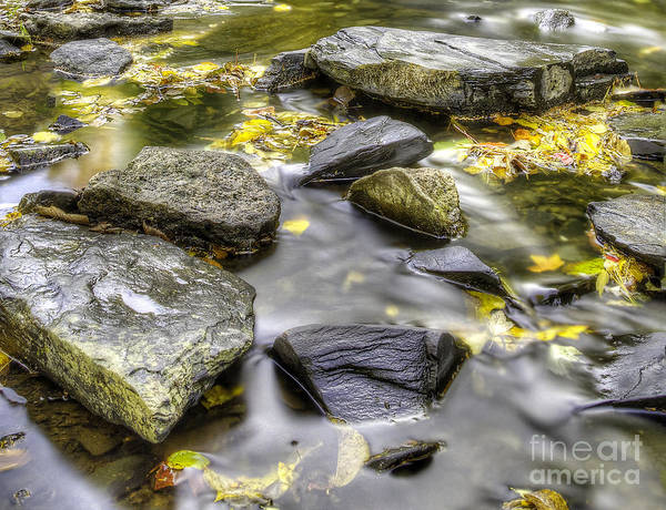 Upper Peninsula Wall Art - Photograph - Stream Near Powerhouse Falls by Twenty Two North Photography