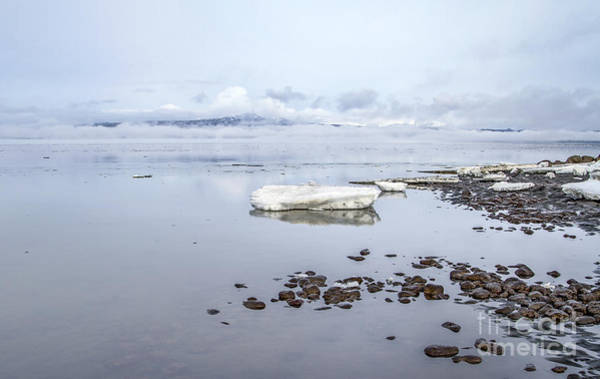 Blue Ice Photograph - Stream Of Stillness by Evelina Kremsdorf