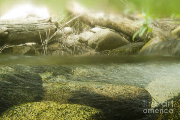 Above And Below Wall Art - Photograph - Stream Riffle Habitat by William H. Mullins