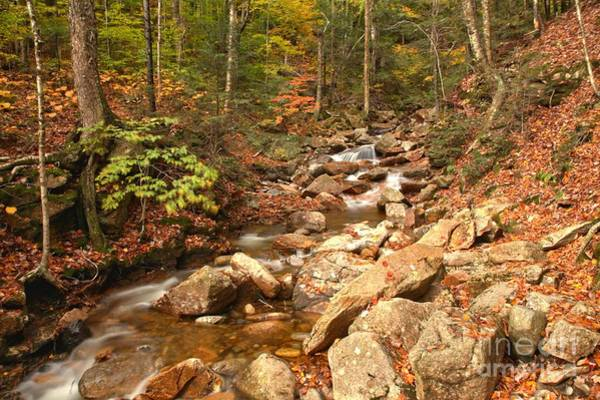 Photograph - Streaming Through Franconia Notch by Adam Jewell