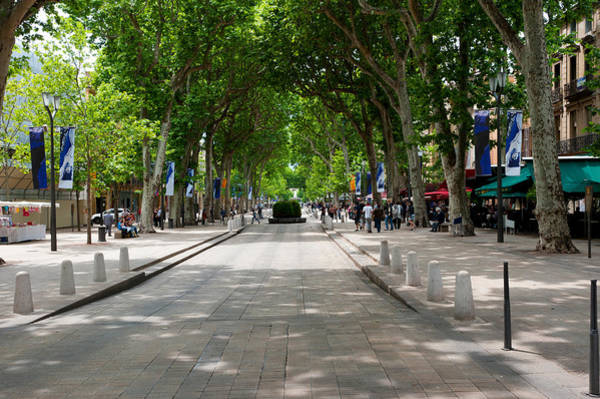 Cours Photograph - Street Scene, Cours Mirabeau by Panoramic Images