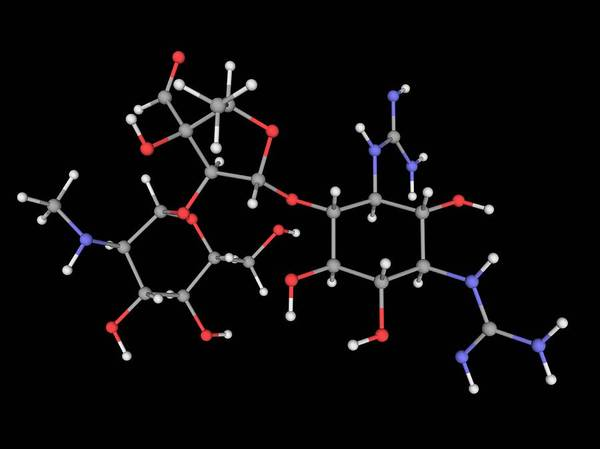 Compound Photograph - Streptomycin Drug Molecule by Laguna Design/science Photo Library