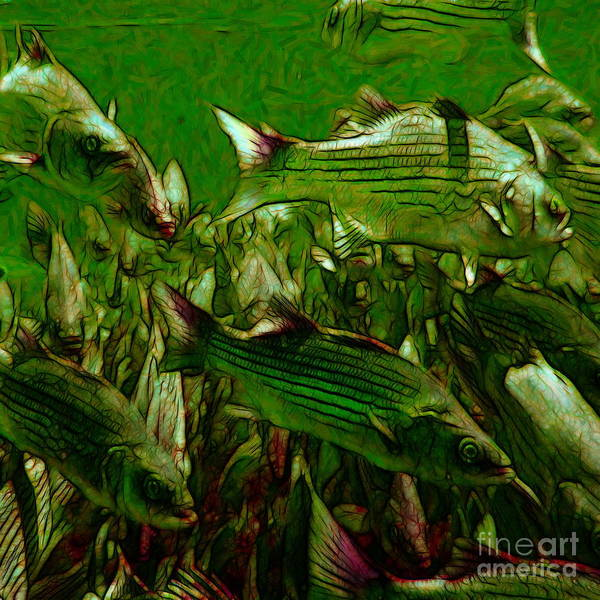 Photograph - Striped Bass - Painterly V2 - Square by Wingsdomain Art and Photography
