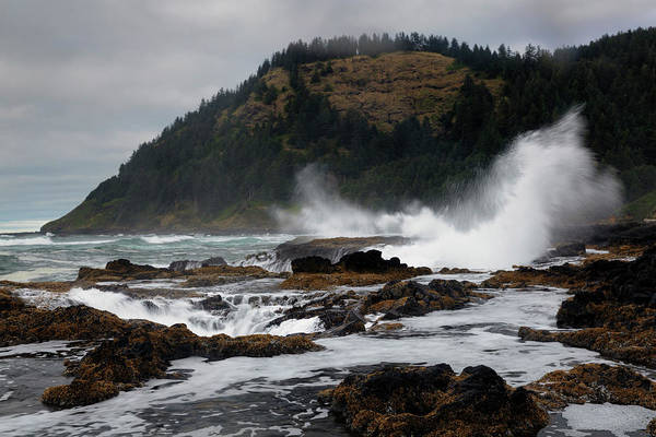 Cape Perpetua Wall Art - Photograph - Stromy Day At Cape Perpetua by Don Smith