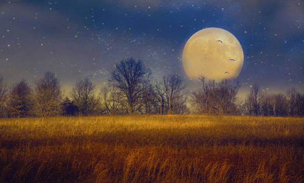 Struck By The Moon Art Print