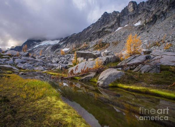 Stuart Photograph - Stuart Range Meadows Reflection by Mike Reid