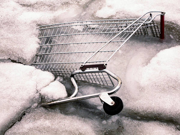 Photograph - Stuck In The Frozen Food Department by Gary Slawsky