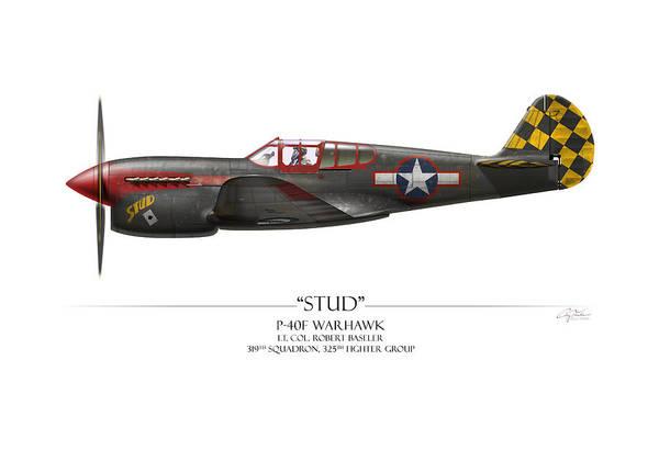 Tinder Wall Art - Painting - Stud P-40 Warhawk - White Background by Craig Tinder