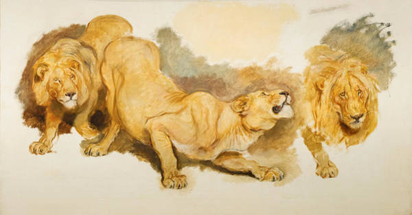 Riviere Painting - Study For Daniel In The Lions Den by Briton Riviere