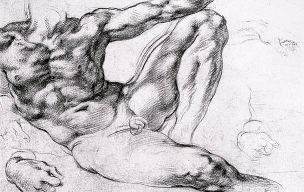 Male Nude Drawing - Study For The Creation Of Adam by Michelangelo