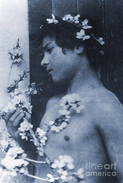 Headband Photograph - Study Of A Young Boy With Flowers In His Hair by Wilhelm von Gloeden