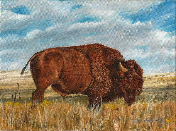 Prairie Grass Painting - Study Of An American Bison by Dreyer Wildlife Print Collections