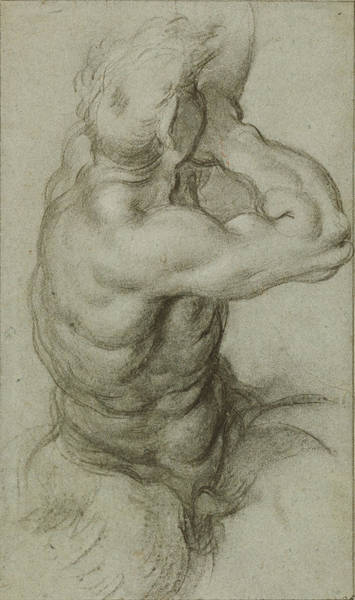 Wall Art - Drawing - Study Of Triton Blowing A Conch Shell Recto by Litz Collection