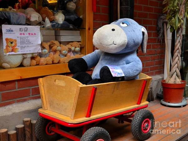 Photograph - Stuffed Donkey Toy In Wooden Barrow Cart by Imran Ahmed