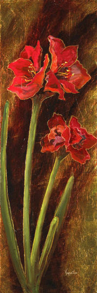 Red Amaryllis Painting - Sturdy Blooms II by Vic  Mastis