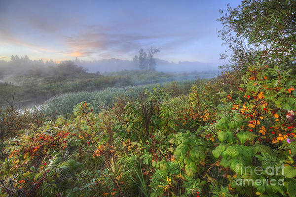 Sturgeon River Photograph - Sturgeon River Valley Autumn Morning by Dan Jurak