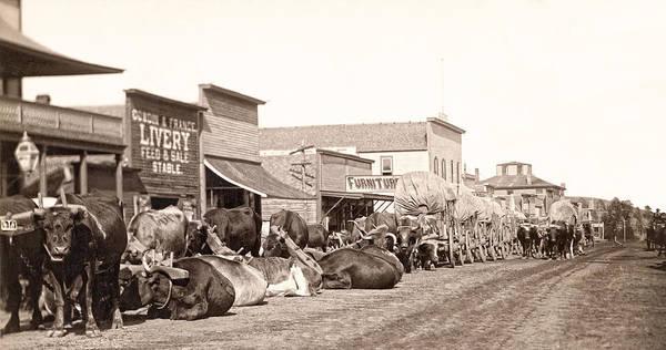 Sturgis Wall Art - Photograph - Sturgis South Dakota C. 1890 by Daniel Hagerman