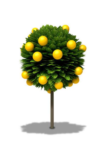 Farming Digital Art - Stylized Orange Tree by Allan Swart