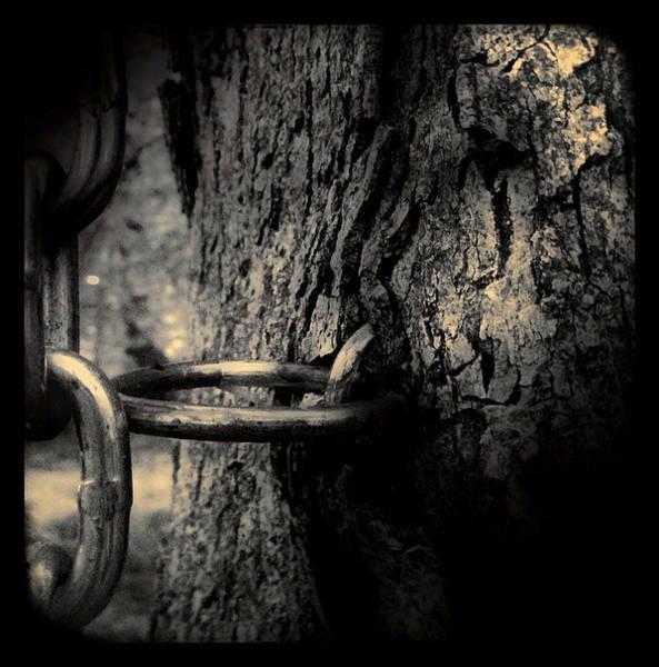 Photograph - Subjugation by Susan Maxwell Schmidt