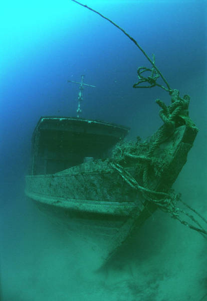 Wall Art - Photograph - Submerged Shipwreck by Matthew Oldfield/science Photo Library