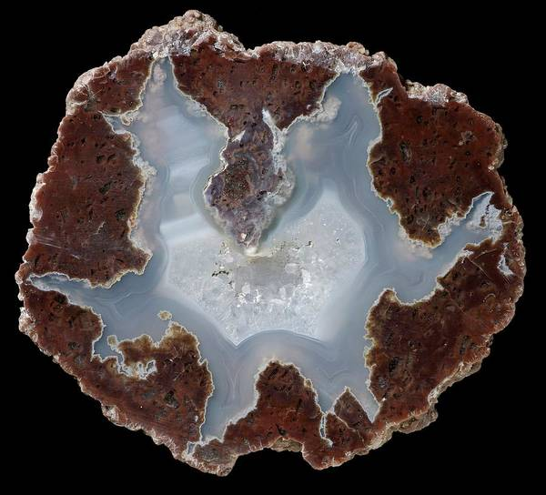 Geodes Photograph - Succor Creek Thunder Egg Agate by Natural History Museum, London/science Photo Library