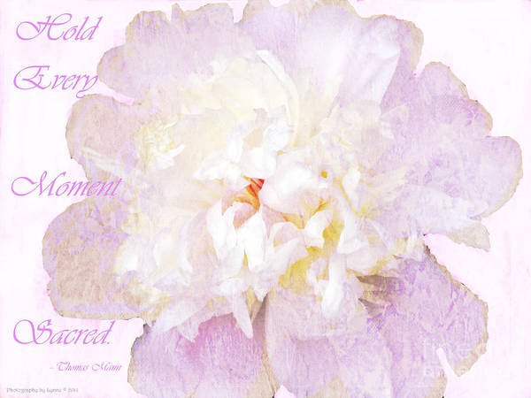 Photograph - Such A Pretty Peony - Inspirational Quote by Gena Weiser